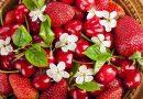 Nincs, aki leszedje az epret – Óriási bajban a termelők!