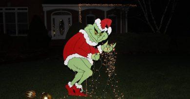 Ismerje meg a halmajugrai grincset- Karácsonyi világítást lopott a fiatal srác